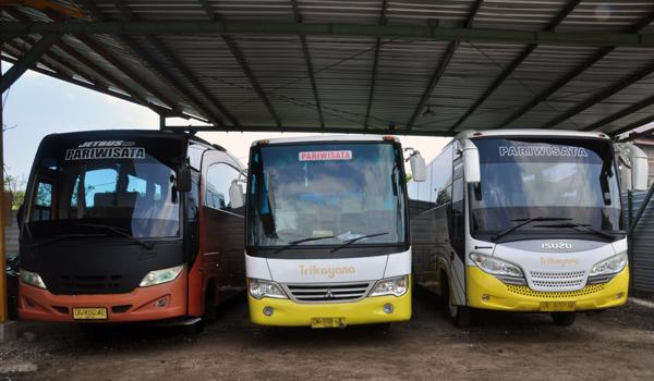 Bus Pariwisata Lombok Kapasitas 25 Sampai 35 Orang