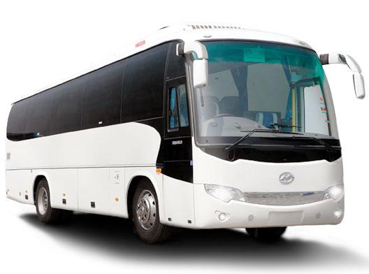 Sewa Bus Pariwisata Kapasitas 45 Orang